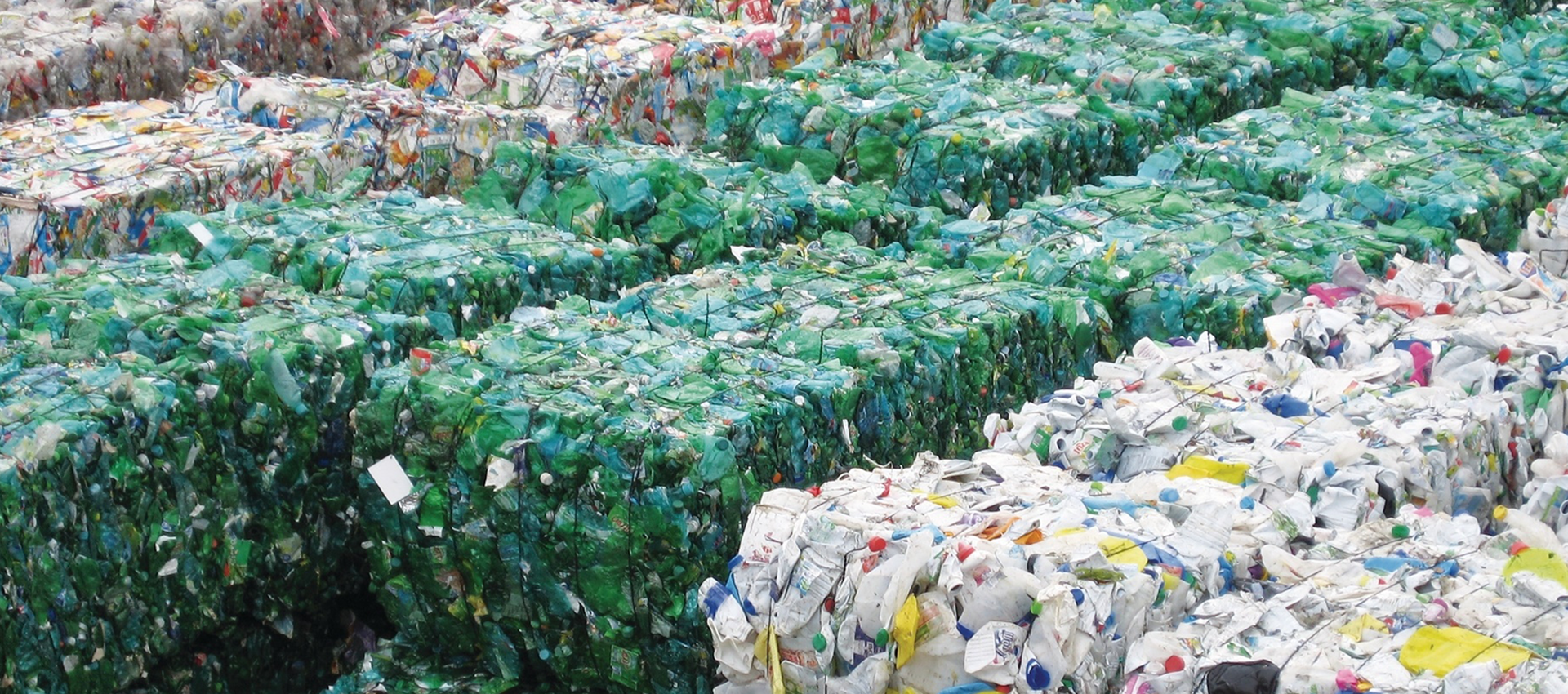 SAP SE & Topolytics: Waste Insights for a Better World